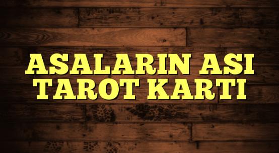 ASALARIN ASI TAROT KARTI