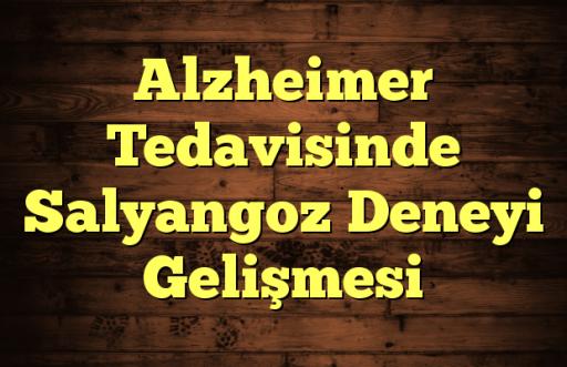 Alzheimer Tedavisinde Salyangoz Deneyi Gelişmesi