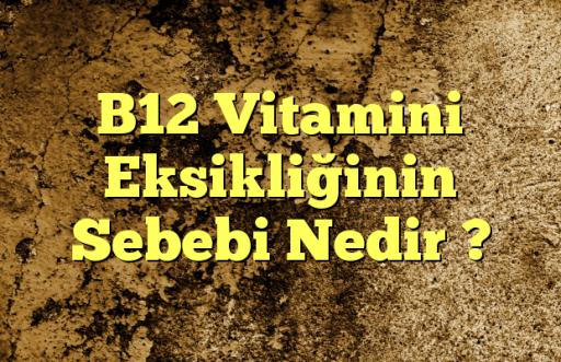 B12 Vitamini Eksikliğinin Sebebi Nedir ?
