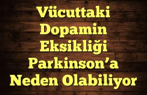 Vücuttaki Dopamin Eksikliği Parkinson'a Neden Olabiliyor