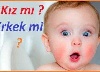bebeğin cinsiyeti belirlenebiliyor mu ?