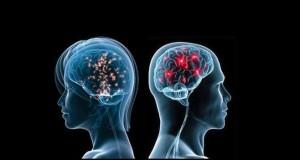 erkek-kadin-beyni
