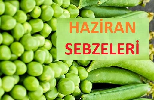 HAZİRAN SEBZELERİ