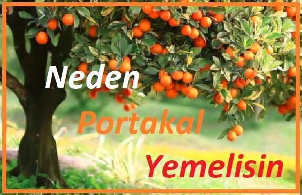 Portakal ve faydaları
