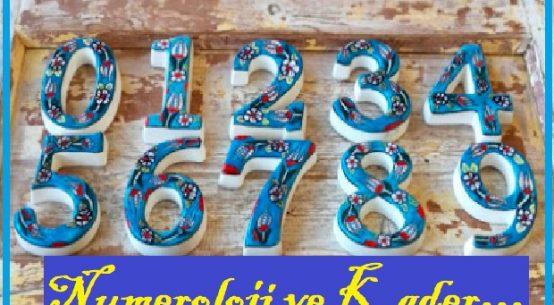Numerology & charts
